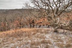 Newton Hills är en delstatspark i den amerikanska staten av South Dakota nära Sioux Falls arkivfoto