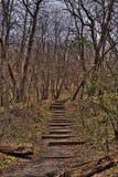 Newton Hills State Park är i South Dakota av Sioux Falls Royaltyfria Foton