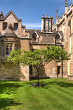 Newton's Apple tree. The Apple tree in front of Newton's home in Cambridge, UK Royalty Free Stock Image