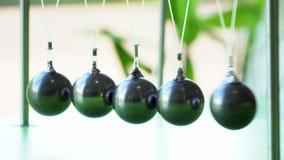 Newton's cradle: a pendulum with swinging metal spheres stock video