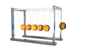 Newtons Cradle - Apples on White. Newtons Cradle made with apple in motion Stock Images