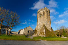 Newtown Castle in Co. Clare. 16th century Newtown Castle, Co. Clare, Ireland Royalty Free Stock Photography