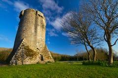 Newtown Castle in Ireland. 16th century Newtown Castle, Co. Clare, Ireland Stock Image