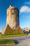 Newtown Castle in Ireland Stock Photography