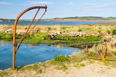 Newtown Harbour National Nature Reserve ö av wighten England Royaltyfri Bild