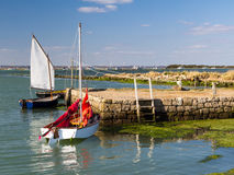 Newtown Harbour National Nature Reserve ö av wighten England Royaltyfri Fotografi