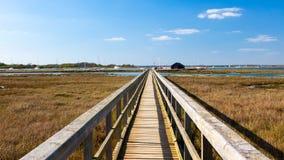 Newtown Harbour National Nature Reserve ö av wighten England Royaltyfria Foton