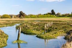Newtown Harbour National Nature Reserve ö av wighten England Arkivbild