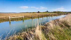 Newtown Harbour National Nature Reserve het Eiland Wight Engeland Stock Foto's