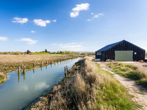 Newtown Harbour National Nature Reserve het Eiland Wight Engeland Stock Afbeelding