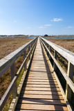 Newtown Harbour National Nature Reserve Isle Of Wight England. Boardwalk at Newtown Harbour National Nature Reserve Isle Of Wight England Royalty Free Stock Photography