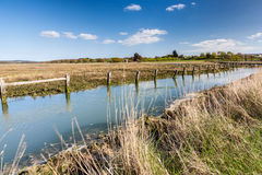 Newtown Harbour National Nature Reserve Isle Of Wight England Royalty Free Stock Photos