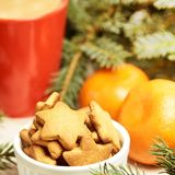 NewYear. Cup of coffee. Delicious tangerines. Spruce branch.  stock photos