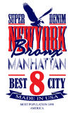 Newyork poster graphic vector design Royalty Free Stock Image
