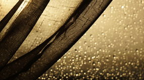 Next Curtain with rain droplets on a window behind. A shot of a net curtain against a window with out of focus rain droplets on a window pane with the evening Stock Photography