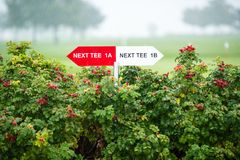 Next tee sign. Arrow direction for 1a and 1b on golf field Royalty Free Stock Images