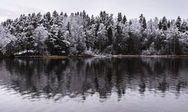 Next to lake at first snow time. Beautiful day in Finland at early winter when first snow rained Royalty Free Stock Photo