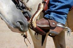 Nez et gaines de cheval photos libres de droits