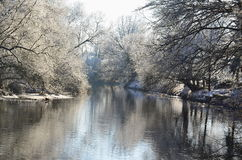 Nezarka-Fluss, Winter 2016, Süd-Böhmen Lizenzfreie Stockfotografie