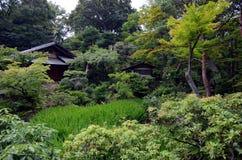 Nezu museum garden in summer, Tokyo, Japan. The original garden, designed in the shinzan-yūkoku、deep mountains and mysterious valleys, style, included rustic Stock Photos