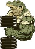 NFerocious strong crocodile. Vector illustration, a ferocious strong crocodile, bodybuilder, performs lifting dumbbells to the biceps royalty free illustration