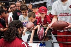 Футбольные болельщики NFL кардиналов Аризоны Стоковое Изображение