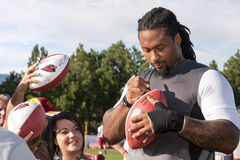 NFL Arizona Cardinals Darnell Dockett Royalty Free Stock Image