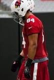 NFL Arizona Cardinals Football Pre-season Training Camp Practice Royalty Free Stock Photo