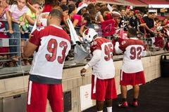 NFL Arizona Cardinals Football Pre-season Training Camp Practice Royalty Free Stock Photos