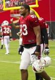 NFL Arizona Cardinals football team training camp Stock Images