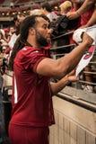 NFL arizona cardinals sezonu obozu szkoleniowego Futbolowa praktyka Fotografia Stock