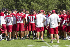 NFL Arizona Cardinals training camp Stock Photos