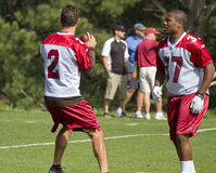 NFL Arizona Cardinals training camp Stock Photography