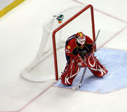 NFL Florida Panthers Goalie Royalty Free Stock Image