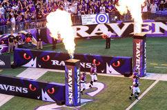 NFL Football Pre Game Excitement. Baltimore Ravens fans in M&T Bank Stadium look on at the pre game show festivities as players from the home team Ravens run out Royalty Free Stock Photography