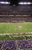 NFL Football - Raven Faithful in Royal Purple Stock Image