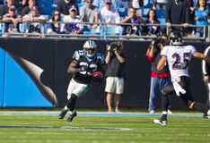 NFL:  Nov 21 Baltimore Ravens Vs Carolina Panthers Stock Image