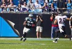 NFL:  Nov 21 Baltimore Ravens Vs Carolina Panthers Stock Image