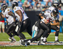 NFL:  Nov 21 Baltimore Ravens Vs Carolina Panthers. CHARLOTTE, NC - NOV 21, Baltimore Ravens quarterback Joe Flacco (5) gets sacked by Baltimore Ravens Royalty Free Stock Images