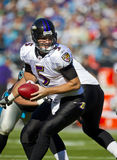 NFL:  Nov 21 Baltimore Ravens Vs Carolina Panthers Stock Photography