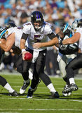 NFL:  Nov 21 Baltimore Ravens Vs Carolina Panthers Royalty Free Stock Photography