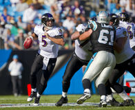 NFL:  Nov 21 Baltimore Ravens Vs Carolina Panthers. CHARLOTTE, NC - NOV 21, 2010:  Baltimore Ravens quarterback Joe Flacco (5) scrambles for yardage as the Royalty Free Stock Image