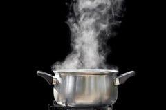 Ånga över matlagningkrukan Arkivbild
