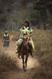Ngabe-bugle Panamá indígena Fotografía de archivo libre de regalías