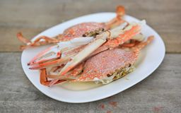 ?ngad h?stkrabba eller bl? krabba i den vita plattan p? tr?tabellen skaldjur i Thailand close upp arkivbild