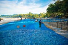 NGAPALI, MYANMAR - 5 DE DICIEMBRE DE 2016: Mujeres birmanas en el trabajo, secando pescados frescos en la playa Copie el espacio  Fotos de archivo