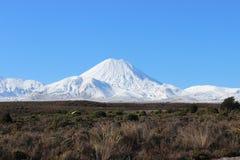 Ngauruhoe火山惊人的锥体在冬天 库存图片