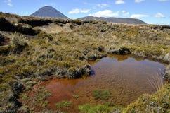 Ngauruhoe volcano landscape, New Zealand Stock Images