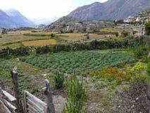 Ngawal village, Nepal Stock Photo