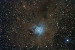 NGC7023 -虹膜星云和他的分子云 免版税库存照片